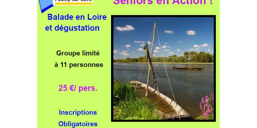 Balade en Loire et dégustation